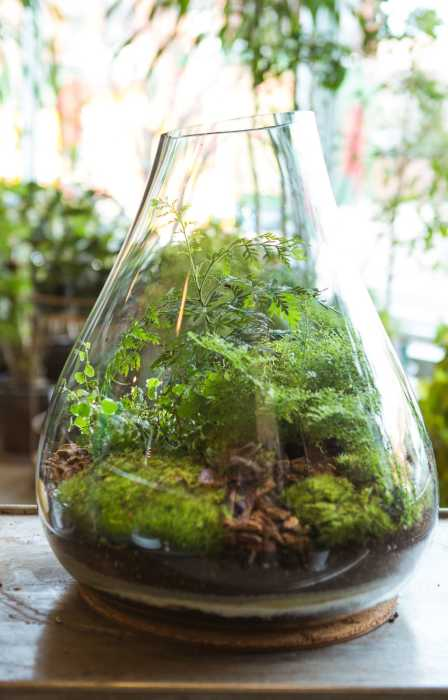Много зелени — очень красиво. /Фото: thebusyweekend.com