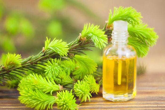Масло чайного дерева. /Фото: s.yimg.com