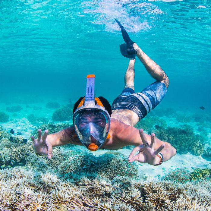 Красота подводного мира на расстоянии вытянутой руки. /Фото: img.nauticexpo.es