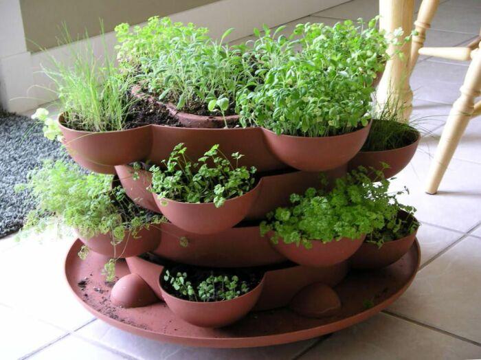 Оформление композиции сделает растения незаменимым атрибутом дизайна. /Фото: psichapter.net
