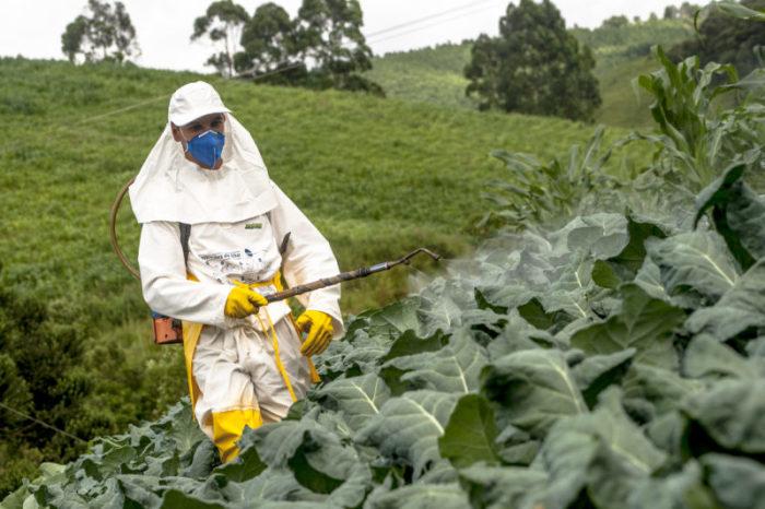 Органическое земледелие также использует препараты, хотя и несинтетического происхождения. /Фото: en.euractiv.eu