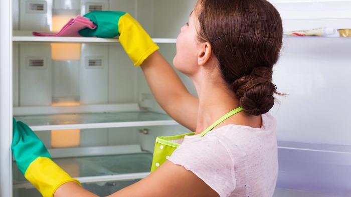Раз в два дня мыть холодильник — это не для нас. /Фото: media4.s-nbcnews.com