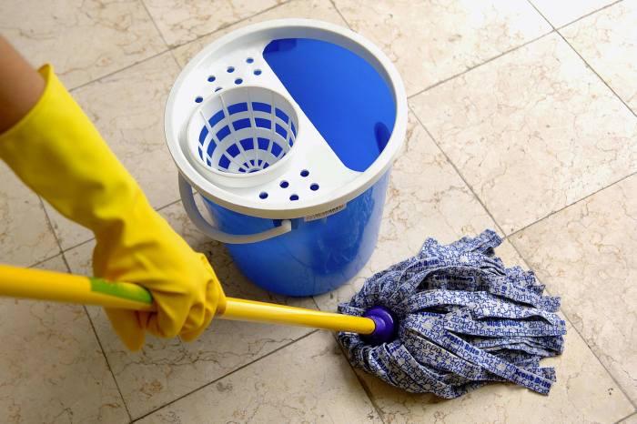 Эффективная помощница при любой уборке дома. /Фото: safpa.be