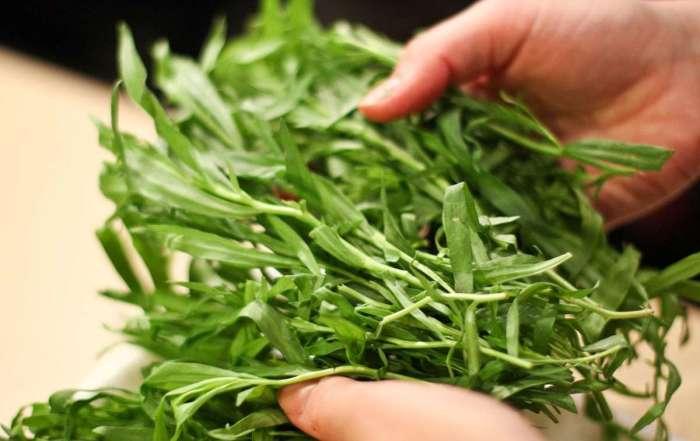 Эстрагон придает блюду яркий, насыщенный и свежий букет. | Фото: xcook.info