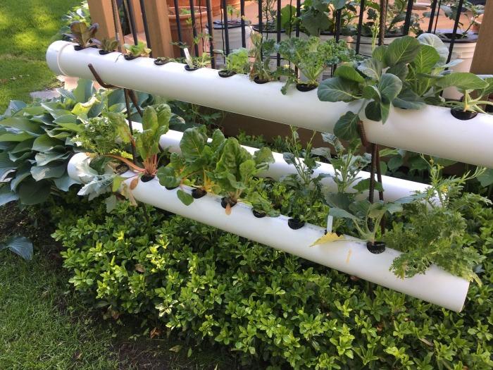 Грядки в трубах помогают экономить площадь. /Фото: stmedia.stimg.co