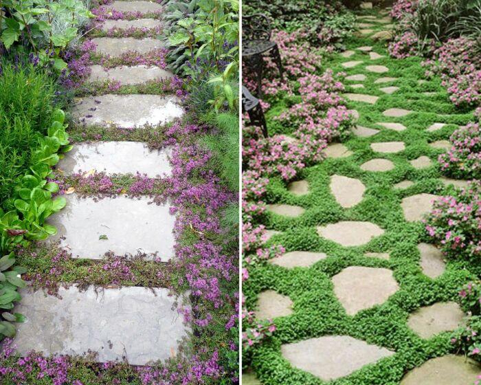 Тандем камня и почвопокровных растений делает дорожки эффектнее.