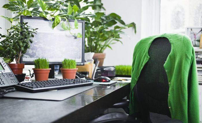 Красота, спокойствие и предельная продуктивность. /Фото: i.pinimg.com