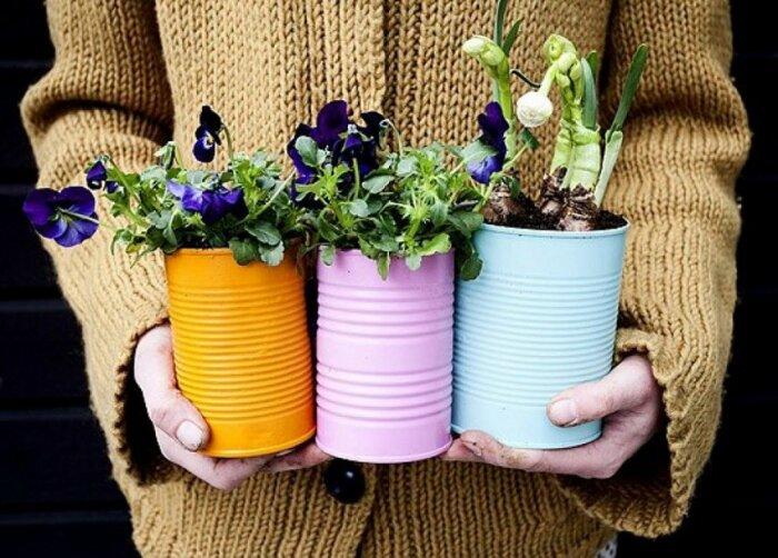 Практично, удобно и бюджетно — отличный вариант для выращивания растений. /Фото: i1.wp.com