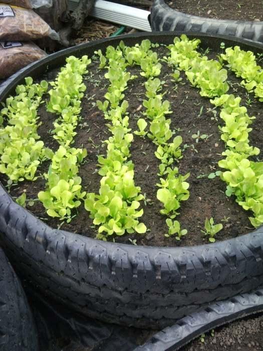 Покрышки – самый простой способ создания высоких грядок. /Фото: cdn.instructables.com