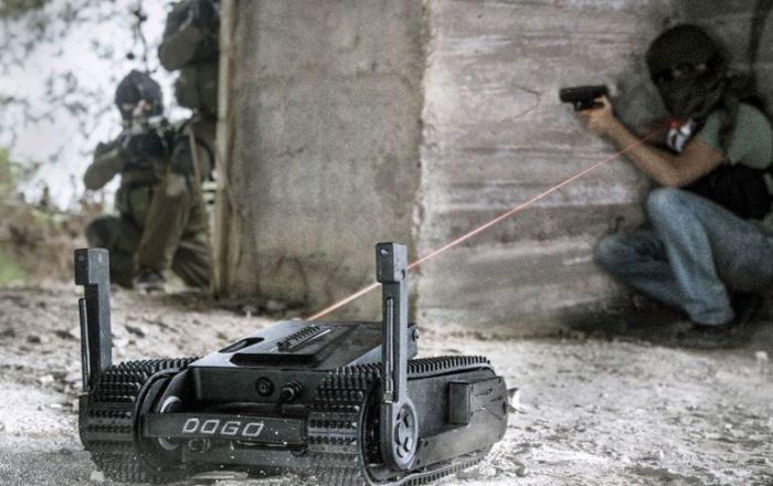 Робот Dogo отличный напарник для силовиков при выполнении спецопераций. /Фото: hips.hearstapps.com
