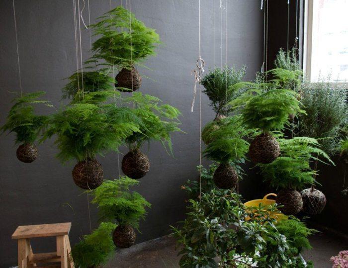 Подвесной сад в квартире. /Фото: simplecraftidea.com