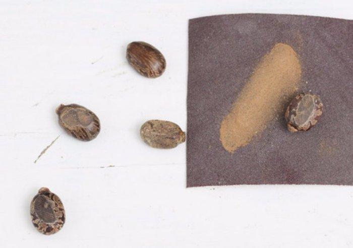 Наждачная бумага пригодится и на даче, в период посадки семян. /Фото: blabto.com