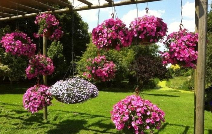 Красивый подвесной сад на дачном участке. /Фото: ogorod.ua