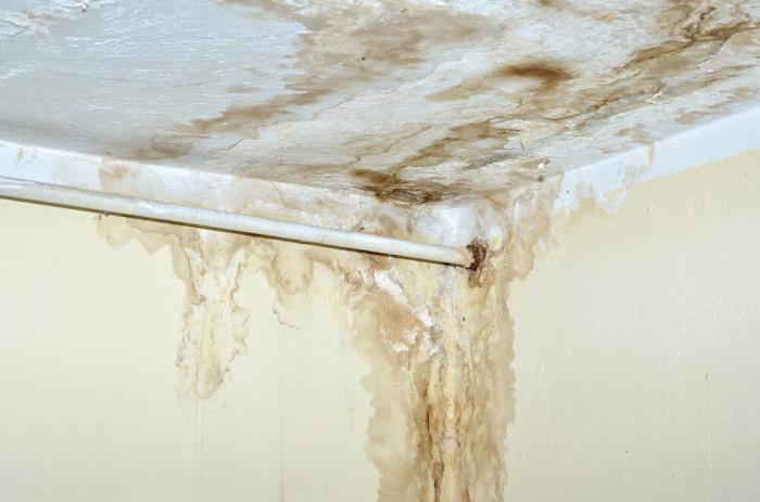 Протечки на потолке – сигнал опасности. /Фото: media.improvenet.craftjack.io