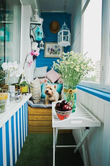 Сочетание белого и синего также смотрится очень органично и непосредственно. /Фото: v.img.com.ua