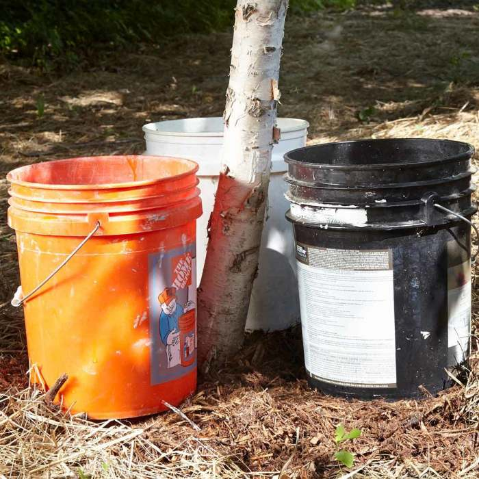 С помощью пластиковых ведер можно сделать капельный полив для дерева. /Фото: familyhandyman.com