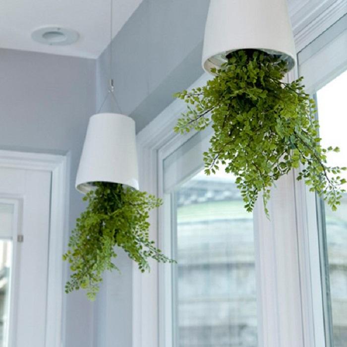 Оригинально смотрится подвесной сад, расположенный вверх ногами. /Фото: media.lamchame.vn