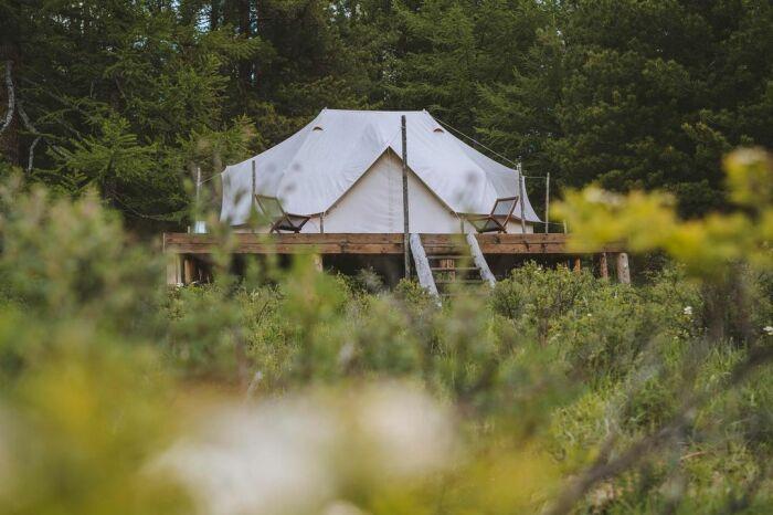 Палатка мини-отеля «Лес и море» на Алтае. /Фото: instagram.fhel5-1.fna.fbcdn.net