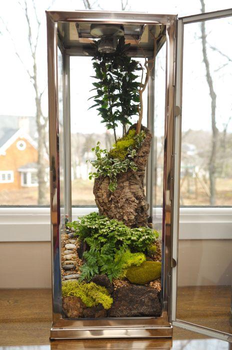 Главная прелесть и особенность сада в бутылке — его стиль. /Фото: i.pinimg.com