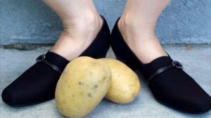 Если положить картошку в ботинок, то носить обувь станет гораздо удобнее. /Фото: zibainis.lt