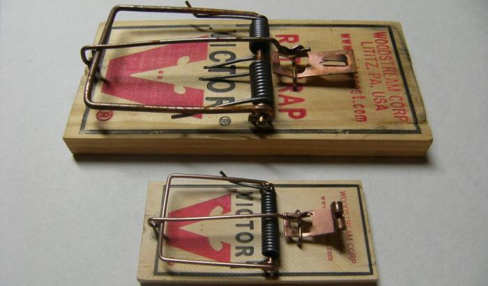Первые мышеловки. /Фото: agresori.com