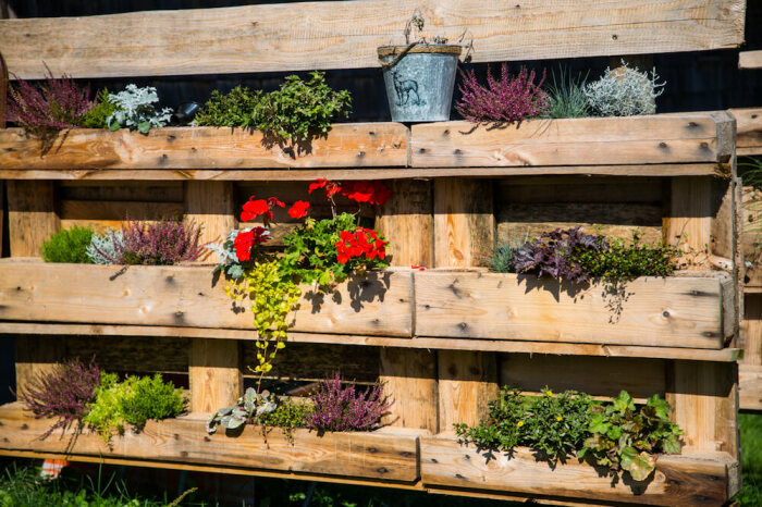 Паллеты – готовая конструкция для вертикального сада. /Фото: kellogggarden.com