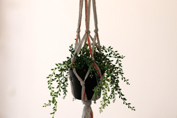 Минимум усилий и превосходный результат — кашпо для подвесных композиций. /Фото: diy.sndimg.com