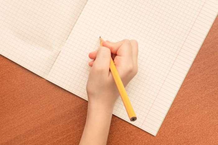 Всем известный внешний вид тетрадей на самом деле имеет иное назначение. /Фото: avalon.fabiosacdn.com