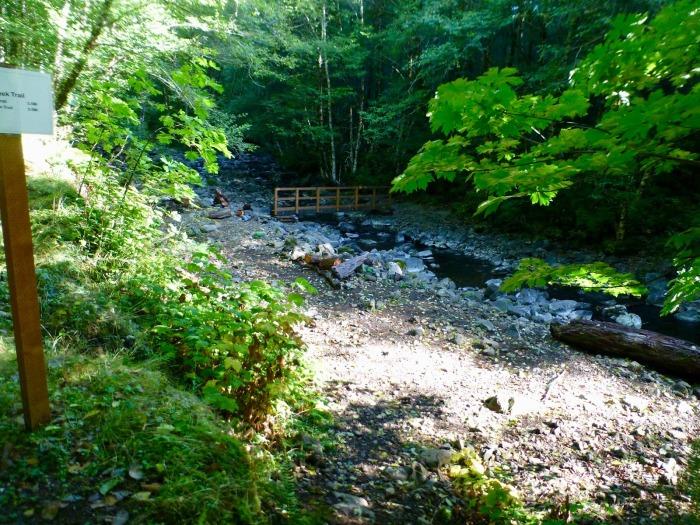 Идиотский ручей  (Idiot Creek). /Фото: 3.bp.blogspot.com