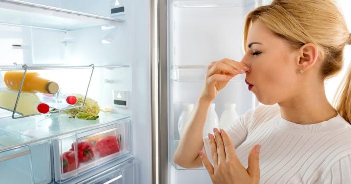 Если из холодильника пахнет, положите в него старый чайный пакетик. /Фото: hypios-ci.com