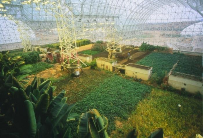Ферма для выращивания урожая в «Биосфере-2». /Фото: hybridtechcar.com