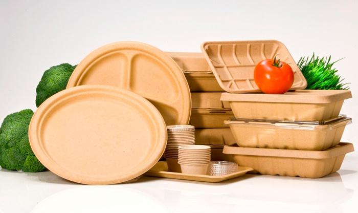 Пластиковые тарелки можно модернизировать. /Фото: sb.by