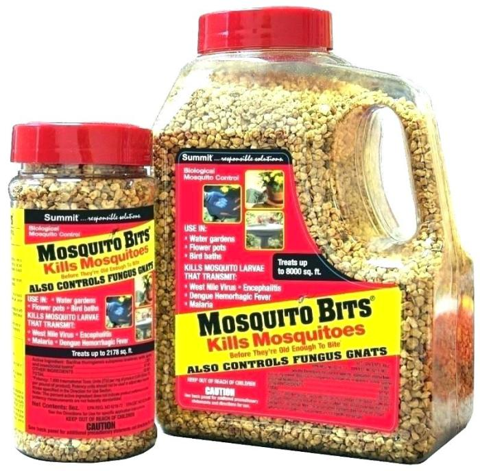 Эффективное средство, чтобы уничтожить комаров еще до их появления. /Фото: thenest.site