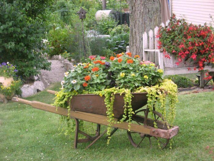 Красота может украшать любое место сада или огорода. /Фото: i.pinimg.com
