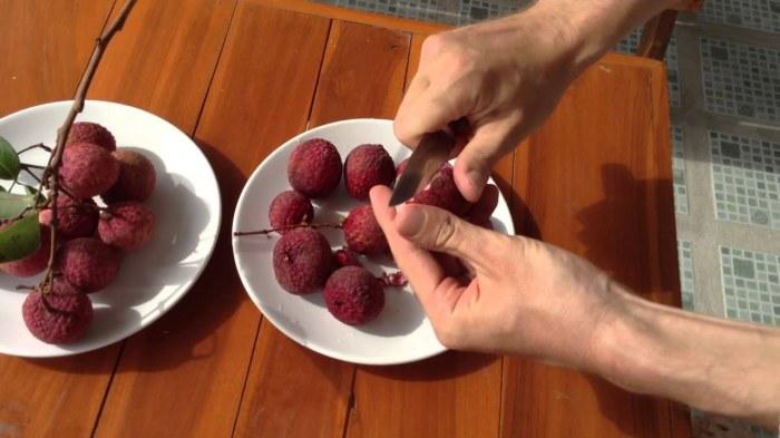 Для тех, кто следит за уровнем сахара в крови, употребление большого количества личи может быть смертельным. /Фото: i.ytimg.com