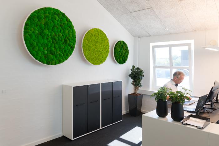 Зеленое дополнение подходит и для стен. /Фото: naturalgreenwalls.com