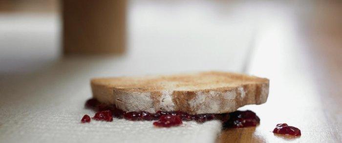 Ронять еду не страшно, если ее быстро поднимать? /Фото: forumfr.com