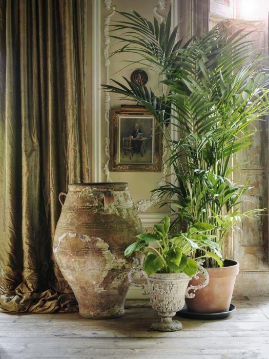 Комнатные растения с крупными листьями всегда привлекают внимание. Не забудьте подобрать для них красивый горшок, как в этом примере. /Фото: i.pinimg.com