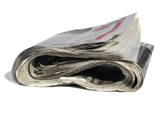 Газеты на природе не только для растопки пригодятся. /Фото: e1.am.phnx.pics