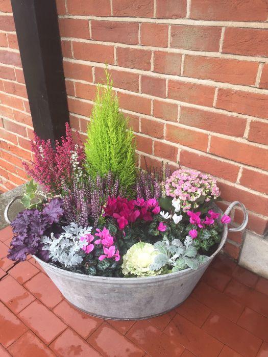С красивыми растениями даже простой тазик будет смотреться органично. /Фото: i.pinimg.com