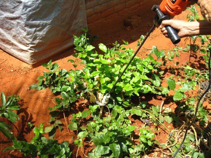 Полезная функция, которая весьма пригодится в садоводстве. /Фото: obustroeno.com