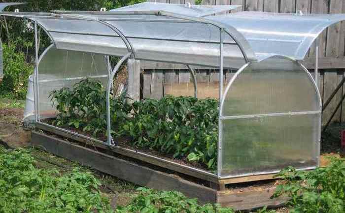 Важно выбирать материал, который не навредит росту растений внутри парника или теплицы. /Фото: elmarket.by