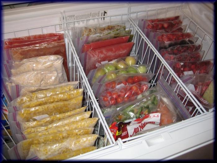 При заморозке продуктов в первую очередь важно учитывать их полезность и состояние после разморозки. /Фото: natpress.net