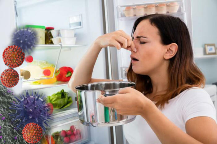 Сначала нужно вымыть все подвижные детали холодильника. /Фото: mms.mk