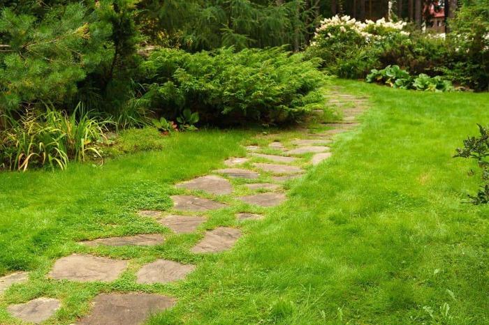 Трава создает иллюзию, что камни лежали здесь испокон веков. /Фото: gardentabs.com