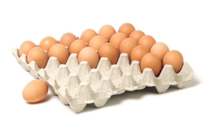 Упаковка от яиц пригодится для создания розжига. /Фото: huhtamaki.com