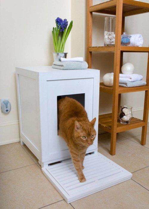 Сделать туалет для питомца скрытым — хорошее решение и для животного, и для уюта в доме. /Фото: telegraf.com.ua