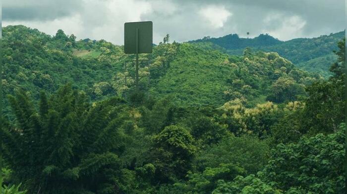Беспроводная система удобна для передачи возобновляемой электроэнергии в труднодоступных местах. /Фото: static.euronews.com