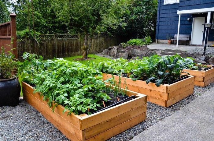 Такой подход к высадке растений выглядит очень аккуратно и красиво. /Фото: eatanchorhitch.com