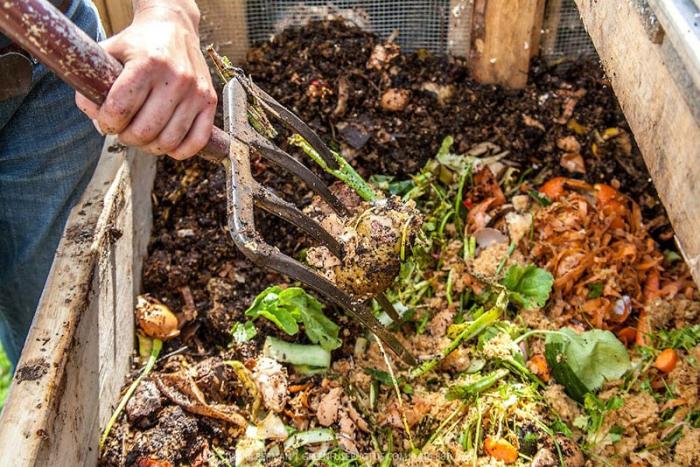 Осенью компост выполняет защитную функцию, которую сложно переоценить. /Фото: superdachnik.com.ua